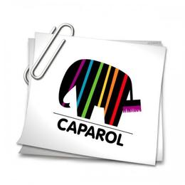Шпаклевка Caparol-Glattspachtel