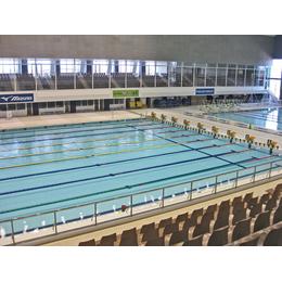 Плитка для бассейнов Interbau Blink Бассейн в спорткомплексе в Хамамацу