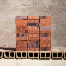 Клинкерная плитка Janinhoff RED-BLUE VARIEGATED, COAL SHG STP-7B/SK-FS