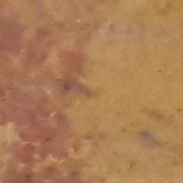 Натуральный камень Травертин огненный полированный