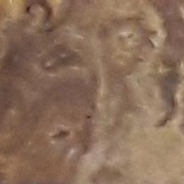 Натуральный камень Травертин тигровый полированный