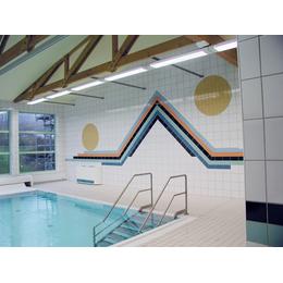 Плитка для бассейнов Interbau Blink Школьный бассейн
